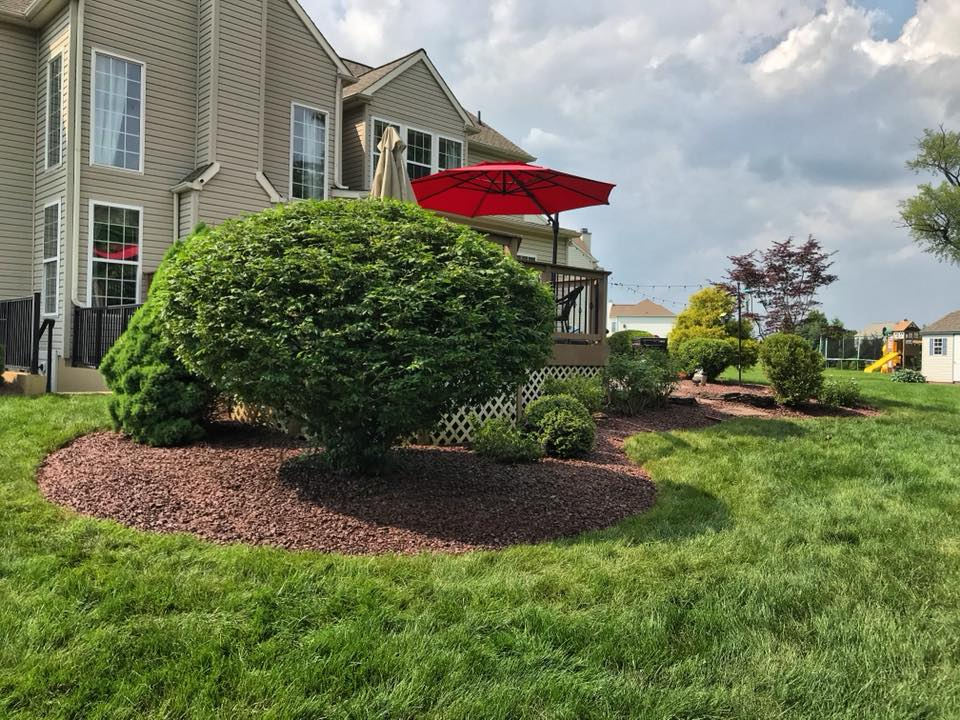 landscaping design project